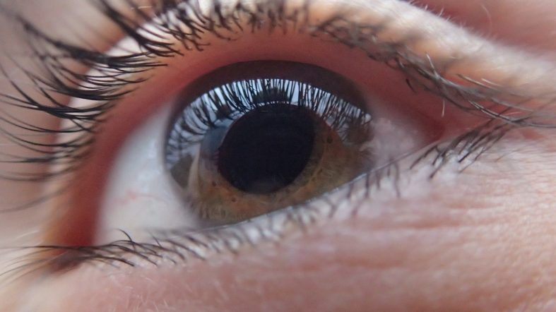 The Connection Between CBD and Glaucoma