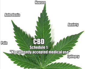 is cbd legal 4 i