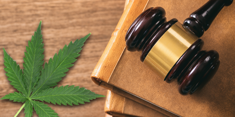 The Changing Rules on Hemp Products (CBD Oil) Use in Knoxville