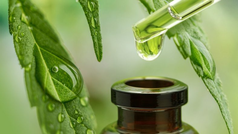 The Latest Testimonials on the Effectiveness of CBD Oil