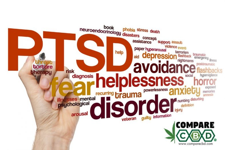 CBD for PTSD (Post Traumatic Stress Disorder): Does CBD Help Treat PTSD?