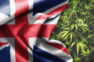 Medical Cannabis to be Available on NHS in the UK within a Month