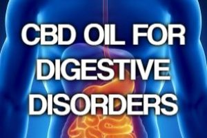 Can CBD Treat Digestive Disorders like IBD, IBS and Crohn's Disease?