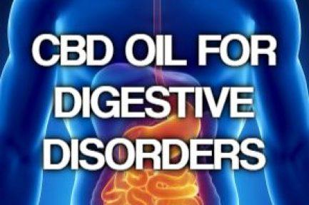 Can CBD Treat Digestive Disorders like IBD, IBS and Crohn's Disease?